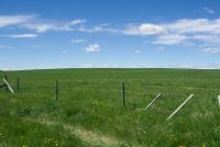 SOLD! 160 acres Farmland - Mountain View County, Alberta