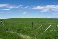 SOLD! 160 acres Farmland - Mountain View County, Alberta